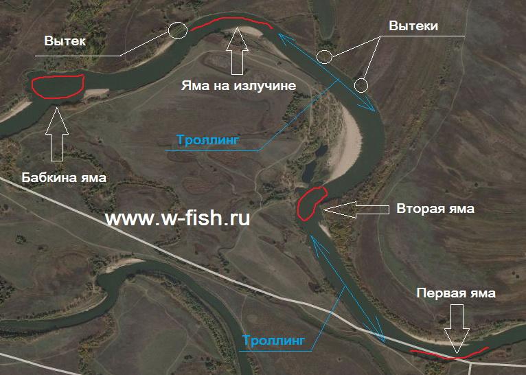 http://www.w-fish.ru/info/img/mangut.jpg