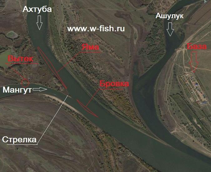 http://www.w-fish.ru/info/img/nizhnee-trehrechie-ahtuba.jpg