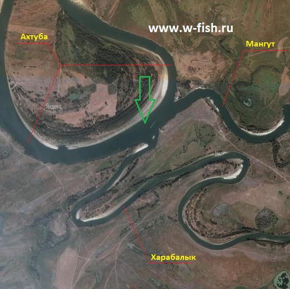 http://www.w-fish.ru/info/img/verhnee-trehrechie.jpg