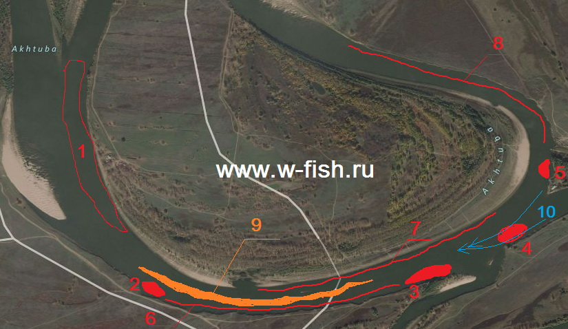 http://www.w-fish.ru/info/img/verhnee-trehrechie_.jpg