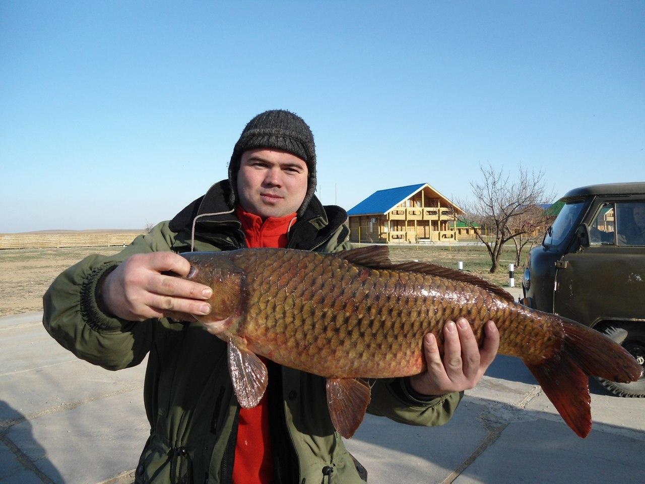 рыбалка на базе world fish