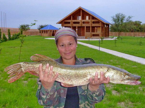 харабали базы отдыха для рыбалки у романыча