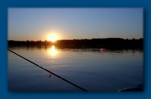 какая рыба ловится зимой на цимлянском водохранилище