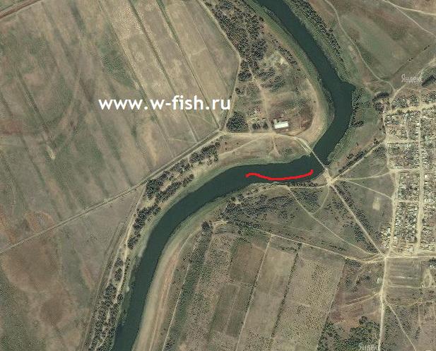 http://www.w-fish.ru/info/img/ashuluk-yama1.jpg