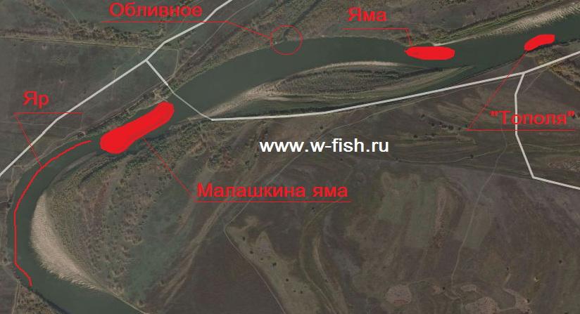 http://www.w-fish.ru/info/img/malashka.jpg